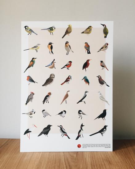 Plakát ptáčci A3