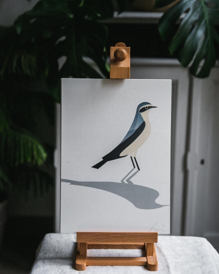 Grafika - bělořit šedý - A4