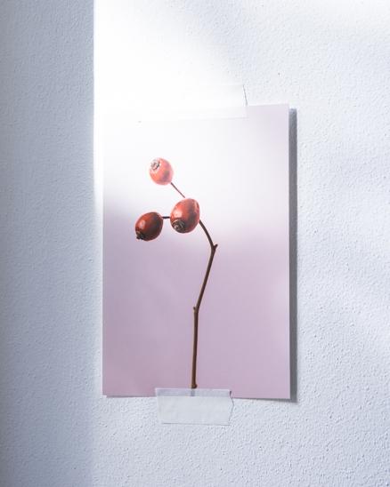 Plakát šípky červené (menší)