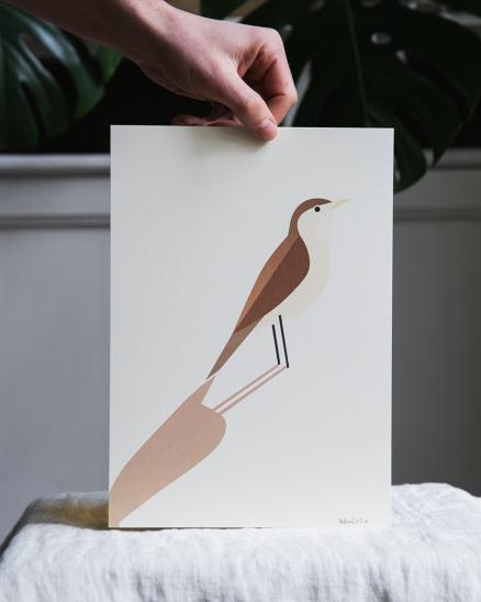 Grafika - cvrčilka - A4